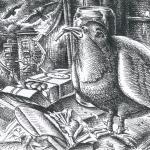 urbane-pigeon